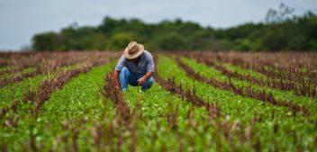 Con una línea de créditos asistirán a agricultores familiares de Salta para fortalecer las economías regionales